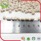 中国の中型の白い腎臓豆200-220PCS/100g