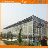 Alta qualità Greenhouse Covered da Polycarbonate Sheet e da Glass