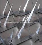 Спайк стены обеспеченностью средний/ограждать спайки бритвы