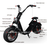 Il motorino elettrico di Harley del motociclo nuovo 1000W con rimuove la batteria