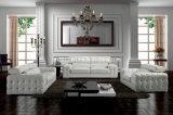 Wohnzimmer-echtes Leder-Sofa (SBO-2726)