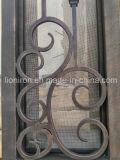 Serviço & qualidade nas melhores portas de entrada da parte dianteira do ferro do preço