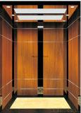 Подъем лифта пассажира Fujizy