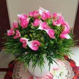 Piante e fiori artificiali di piccoli bonsai Gu-Zqpsbwbrr8qb8