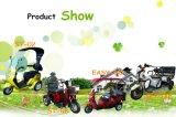 緑の電気スクーターの電気三輪車のオートバイの大人