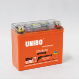 Motorrad-Batterie LCD-Bildschirm-Gel wartungsfreies Ys12-7-3A 12V7ah