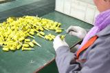 Joints de boulon d'économie de haute sécurité, boulon de diamètre de 8mm