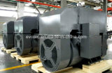 Alternateur sans frottoir à haute tension de générateur CA ISO14001 9001 avec le brevet AVR