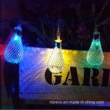 Luz solar de la cadena de 10 LED para la decoración del jardín (RS1008C)