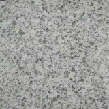 Hot Natural Stone Floor Azulejo Sésame Blanc Granite G603 pour gros
