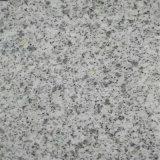 도매를 위한 최신 자연적인 돌 지면 도와 참깨 백색 화강암 G603