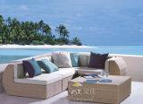 Insiemi esterni del sofà, mobilia del rattan del patio, insiemi del sofà del giardino (SF-319)