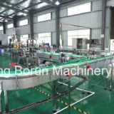 Linha de produção pura automática da água do projeto do cliente para frascos plásticos