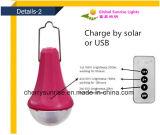 Luces solares ao ar livre Solares de Home Depot dos jogos das luzes da lâmpada recarregável com o carregador do telefone do USB