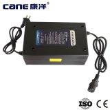 carregador de bateria acidificada ao chumbo profundo do carregador de bateria do ciclo de 48V 38ah