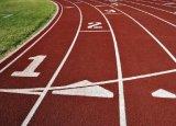 Allwetter- athletische Spur, Bereich-Spur und Spielplatz