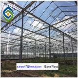 Venlo 유형 유리는 Hydroponic 시스템으로 토마토 온실을 포함했다