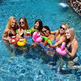 De Vlotters van de pool, de Opblaasbare Houder van de Drank van de Doughnut van de Paraplu van de Flamingo van de Palm