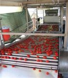 Chaîne de production de jus de tomates de machine de Macking de sauce tomate