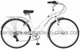 """Bicicletta della città dell'annata della bici 28 della città delle 7 di velocità dell'annata della bicicletta signore del blocco per grafici d'acciaio """"/bici della città"""