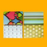 Cartões educacionais de papel Cartões instantâneos com caixa de design personalizado