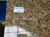Гранит сляба Giallo Friorito Gangsaw для Countertop кухни/верхней части тщеты