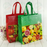 3D Customised Print (MY-001)를 가진 반점 Supply Non Woven Shopping Bag