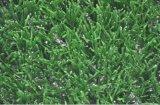 2016年の非Infillingのフットボールの人工的な草