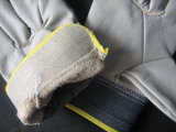 Перчатка водителя задней части джинсовой ткани ладони Furnitrure светлого цвета кожаный