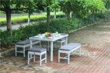 屋外の藤の余暇のチェアーテーブル
