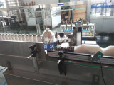 Máquina de etiquetado lateral de la etiqueta engomada de la botella de la venta la caliente