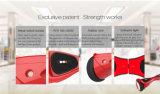 Chinese Fabrikanten Gemaakt de In evenwicht brengende Elektrische Autoped van de Havik van Io tot van de Autoped