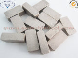 Het Segment van de Diamant van China voor Marmeren Scherpe Uitstekende kwaliteit