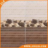 Küche-Raum-keramische Wand-Fliesen des Baumaterial-300X600mm