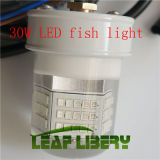 격상된 12V 30W LED Underwater Squid Lure Boat Fish Light Fishing Lamp