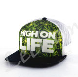 Mitchell и крышка сетки Snapback Ness Fiftted