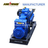 Mwm 1000kw Природный газ / Био Газ / Уголь Газ Генератор для электростанции