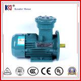 3 Phase Wechselstrom-Induktions-Elektromotor Lieferanten vom China-Gloden
