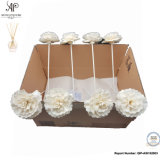 Ap 6cm Reed Diffuser Dry Sola Flower 8PCS / Box Rose Flower