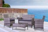 Insieme di vimini della mobilia del patio del rattan esterno