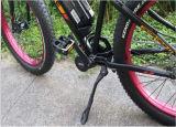 Vendedora caliente del MID Drive Motor Nueva eléctrico Fat Bike
