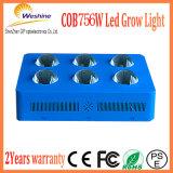 756W 최신 Seling 지구 LED는 천막 플랜트를 위해 가볍게 증가한다