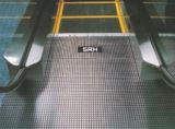 Caminhada movente segura e estável do SRH