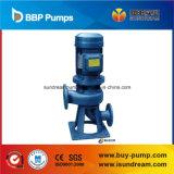 Lw 시리즈 수직 Nonclogging 하수 오물 펌프