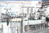 Máquina de rellenar de los PP de la leche automática de la botella