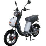 ペダルのモペットが付いているディスクブレーキの電気バイク500With800W
