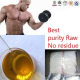 Bodybuilding sin procesar esteroide de Undecanoate de la testosterona del polvo del aumento del músculo