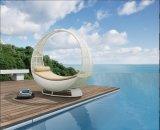 屋外の家具、余暇のソファーの庭はセットした(FP0193)