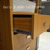 Шкаф спальни домашней мебели прочный