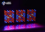 Il LED economizzatore d'energia coltiva 1000W chiaro con Veg e fiorisce